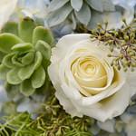 Wedding_Renee_Nick_0934