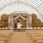 Wedding_Renee_Nick_1480