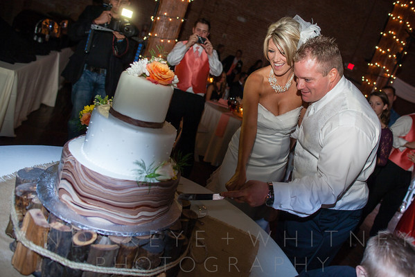 Toasts, Cake Cutting & Tosses