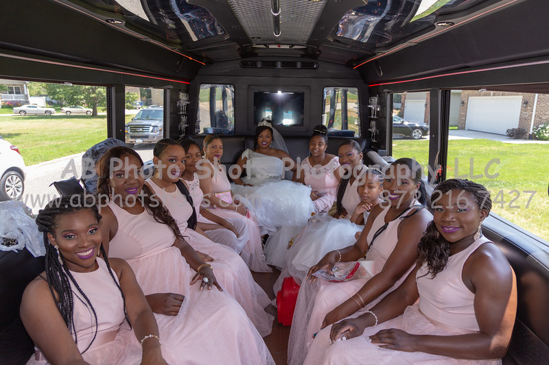 Wedding (212 of 748)