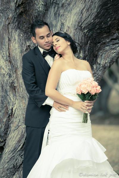 Richard & Andrea Wedding