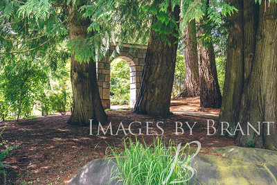 yelm_wedding_photographer_images_by_brant_0026-DS8_5193
