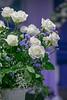 012415_JAbreu_0004