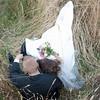 courtneyclarke_ruth&adam_wedding_1414