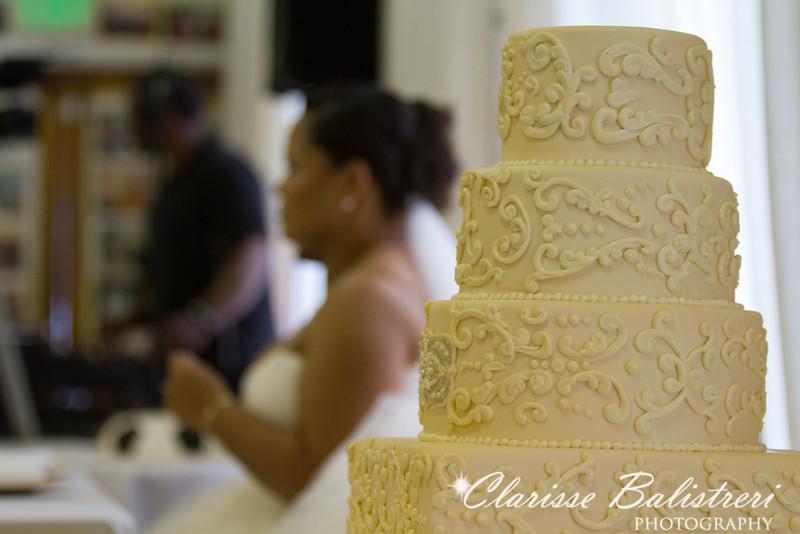 7-30-16 Sabrina - Emmanuel Wedding-872