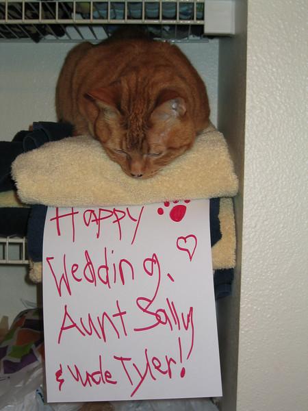 Simba's wedding wish to Sally and Tyler