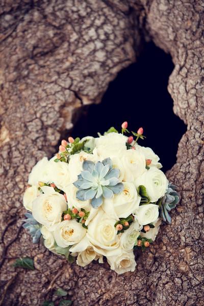 Sandy Walker- Tonia/Joy Weddings
