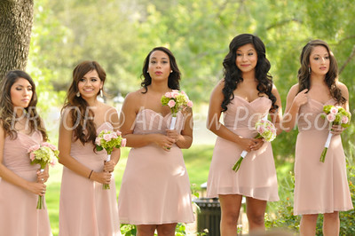 santa_cruz_wedding-2072