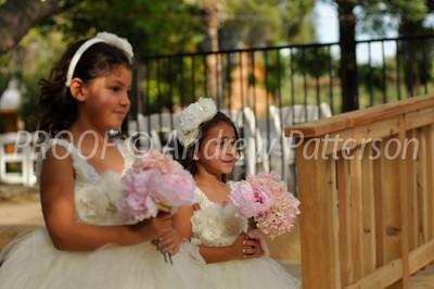 santa_cruz_wedding-2059
