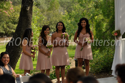 santa_cruz_wedding-2053