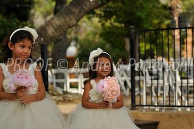 santa_cruz_wedding-2056