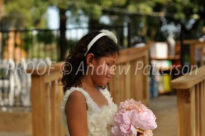 santa_cruz_wedding-2060