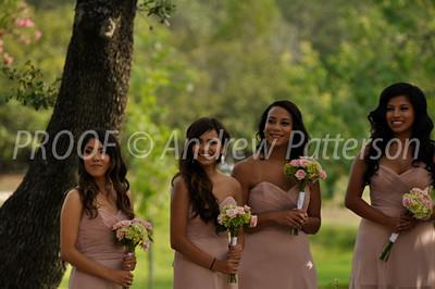 santa_cruz_wedding-2055
