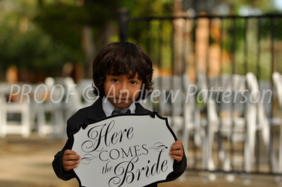 santa_cruz_wedding-2067