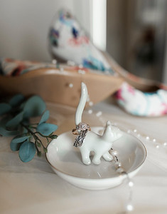 Alexandria Vail Photography Wedding Hanford CA 004