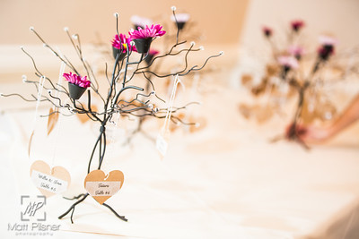 0337-Sargent-Lazar-Wedding