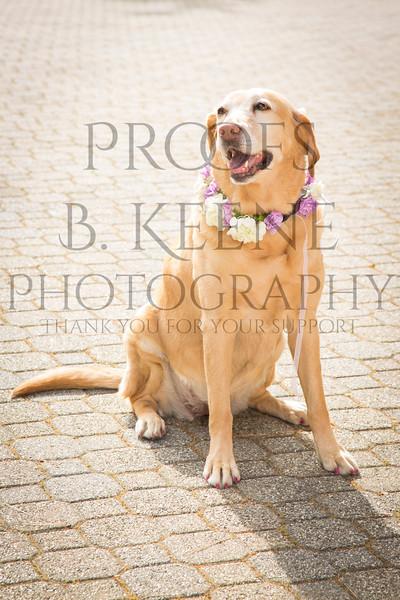 SS_WEDDING_2015_BKEENEPHOTO-21