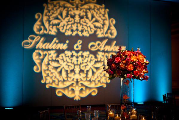 Shalini + Ankur Reception