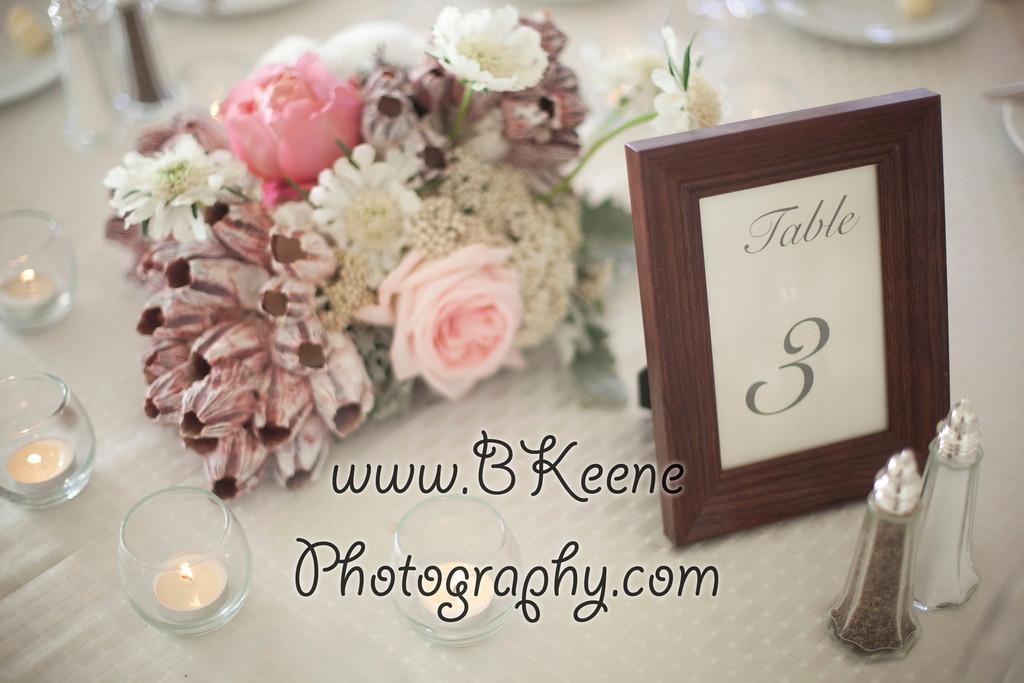 BKeene_ShanaKurt_2012April14_Reception_519