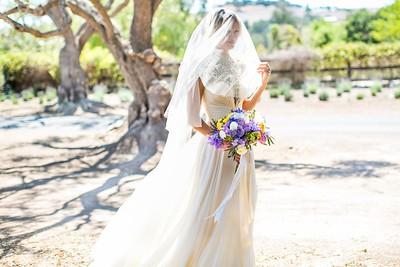 raphaelphoto-shandi-and-ben-wedding-00216