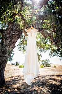 raphaelphoto-shandi-and-ben-wedding-00022