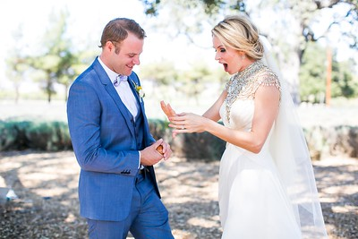raphaelphoto-shandi-and-ben-wedding-00318
