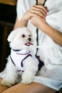 raphaelphoto-shandi-and-ben-wedding-00045