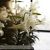 1-Sheila-Wedding-2012-150