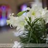 1-Sheila-Wedding-2012-289