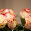 Sherry-John-Wedding-2014-004
