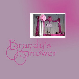 Brandy's Shower