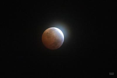 Lunar Eclipse  - Jan 20, 2019