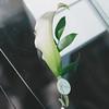 stacy ryan_wedding_006