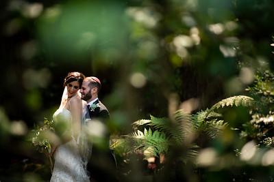 Stephanie & Daniel's Wedding