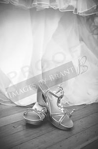 yelm_wedding_photographer_Johnson_0073_DSC_6100