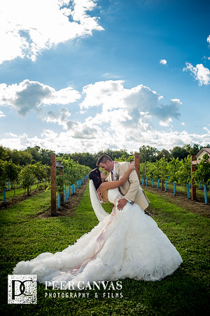 Stephanie + Eric DC Estate Winery Wedding