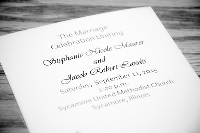 JSL_wedding_2015_-32