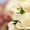 Stephanie-Ryan-Wedding-2012-085