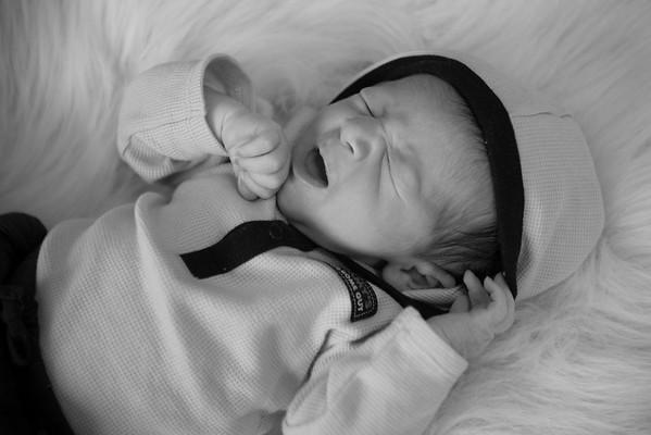 Newborn Gallery 2013