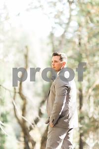 sequoiaforest_17