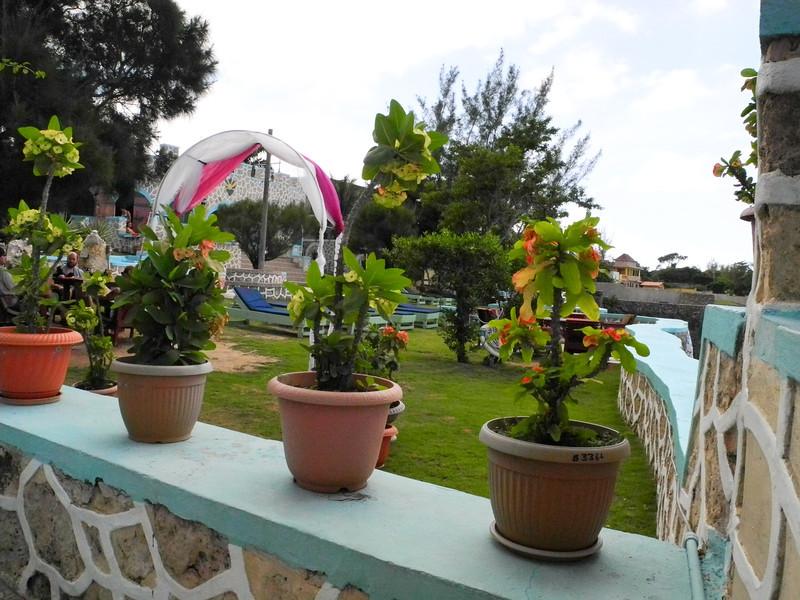 Jamaica 2012-46