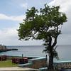 Jamaica 2012-64