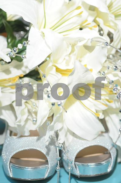 Surita & Shawn Price Wedding 013