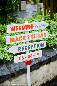 Susan and Mark Wed-17