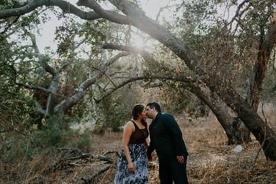 Swapna and Atul Engagement-15