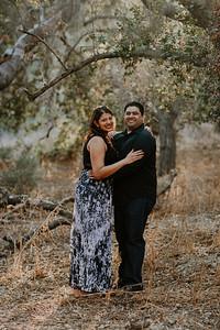 Swapna and Atul Engagement-37