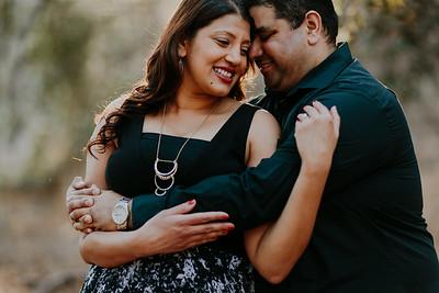Swapna and Atul Engagement-34