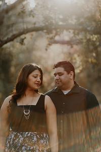 Swapna and Atul Engagement-26
