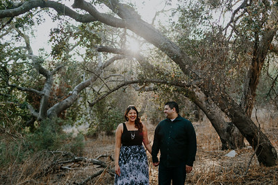 Swapna and Atul Engagement-17