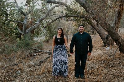 Swapna and Atul Engagement-12